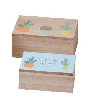 caja-cactus