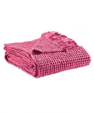 plaid-faustro-rosa-manterol